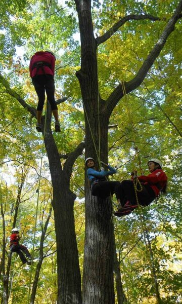 climb-trees-home-mobile-banner-events-mobile