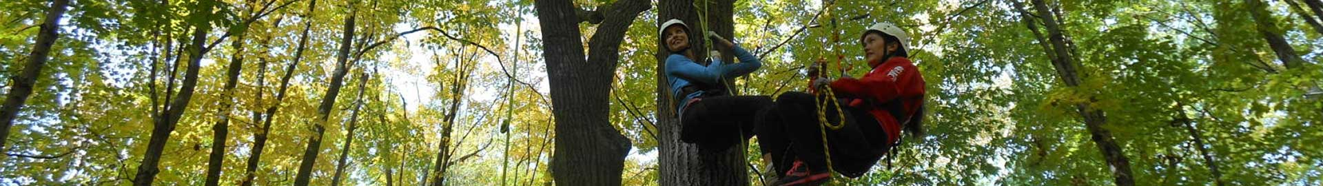 climb-trees-home-mobile-banner-experiences-2